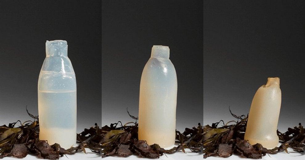 Islanda, la bottiglia del futuro è fatta di alghe