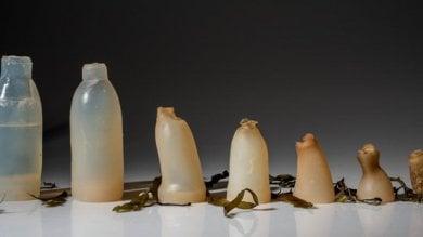 Alghe al posto della plastica, la bottiglia si mangia e non inquina