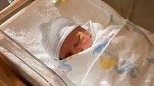 """La soluzione  delle """"culle termiche"""": l'abbandono neonatale  è ancora diffuso   di MILENA NEBBIA"""