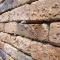Cosa c'è di strano in questo muro di mattoni? L'illusione ottica fa impazzire il web
