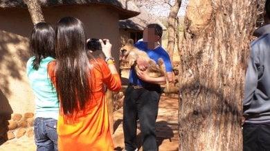 ''Promuove turismo crudele'' TripAdvisor nel mirino degli animalisti