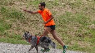 Correre insieme a lui fa bene Istruzioni per il cane ''runner''