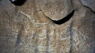 Bisonti e capre di 12mila anni fa scoperta la grotta delle meraviglie