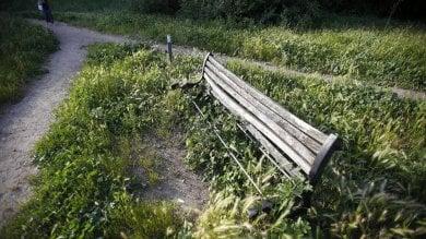 Alberi pericolanti, panchine rotte e rifiuti il verde pubblico è sempre più marcio