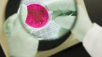 Usa, scoperto in malata batterio che resiste  a tutti gli antibiotici