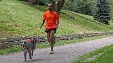 Sei zampe motrici: imparare a correre con il proprio cane /   Foto