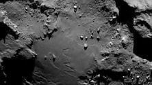 Sulla cometa di Rosetta  i mattoni della vita