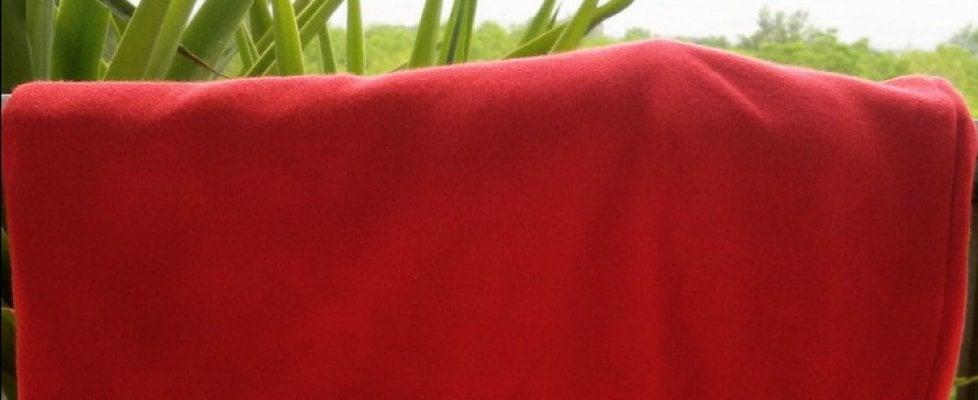 Femminicidio e 2 giugno, il filo rosso delle donne: #saranonsarà