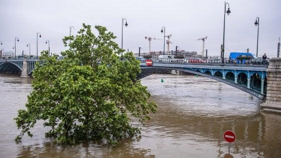 """Parigi, la Senna tocca il suo picco. Il ministro Royal: """"Temiamo altre vittime"""""""