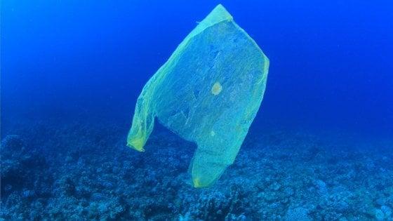 Giornata mondiale degli oceani, i nostri mari soffocati dalla plastica