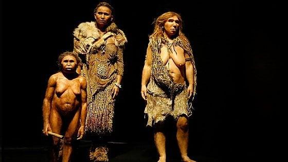 Nell'isola degli Hobbit scoperti i fossili di altri tre antenati dell'uomo