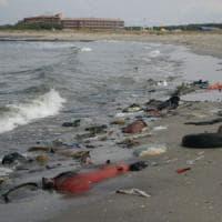 L'Italia avrà una legge per i guardiani dell'ambiente