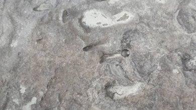Homo erectus, le prime impronte scoperte in Eritrea /   Le immagini
