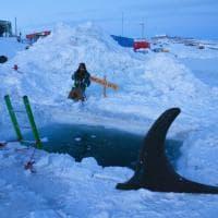 E' festa anche in Antartide: -64°nel giorno più corto dell'anno