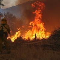 Usa, incendi devastano otto Stati: case evacuate e 66 mln di alberi bruciati