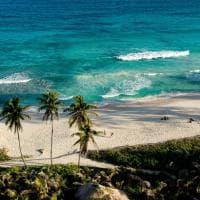 Mare e sabbia. Verde e blu. Incanto Seychelles