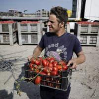 Agricoltura sociale: oltre 3000 aziende nel nuovo welfare