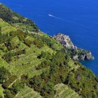 Liguria. Gemme e segreti da scoprire