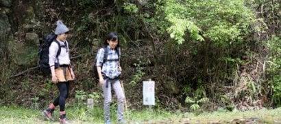 Usa, il bagno nella foresta la pratica orientale anti-stress