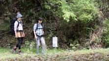 Il bagno nella foresta,  la pratica orientale che combatte lo stress