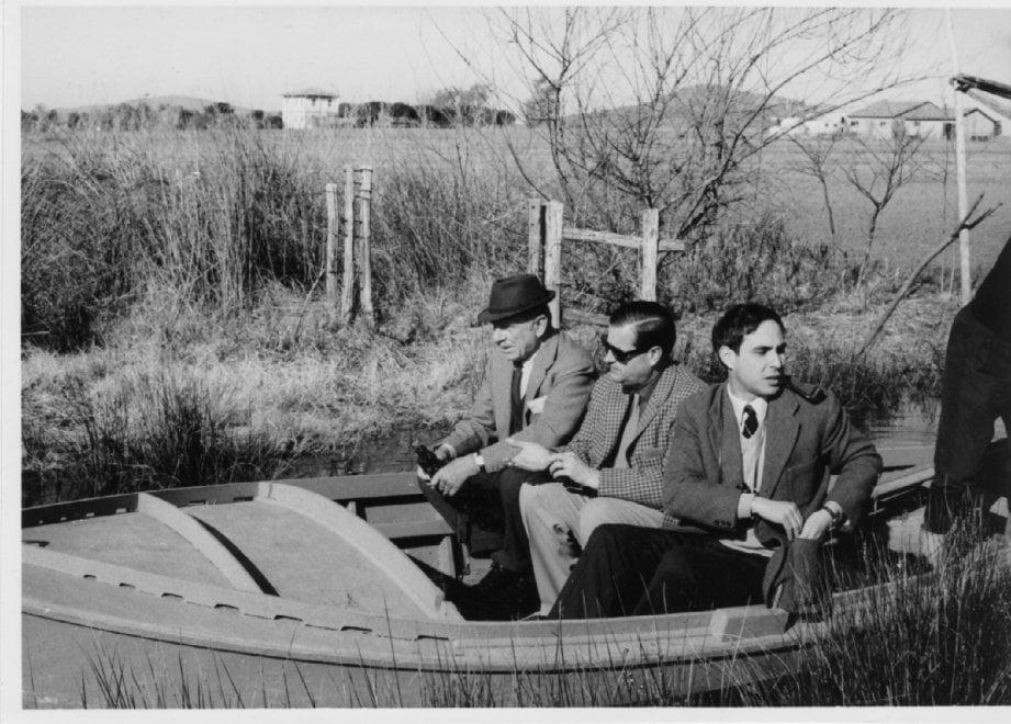 Wwf Italia 50 anni, i volti e gli eventi chiave