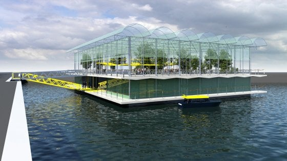 Olanda, la prima fattoria galleggiante: un progetto da 2,5 milioni di euro