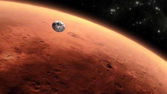 Mammiferi, prove tecniche di riproduzione nello spazio. L'obiettivo sono le colonie