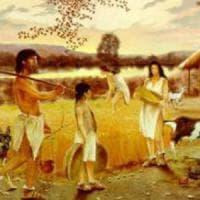 L'agricoltura nacque per iniziativa di diversi gruppi di persone. Lo rivela il Dna