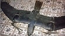 Drone simile a un falco abbattuto in Somalia
