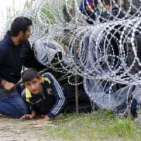 Lesbo, bambini chiusi dietro fili spinati trattati da criminali
