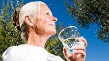 Anziani, 10 tazze d'acqua pesce azzurro e frullati per difendersi dal caldo