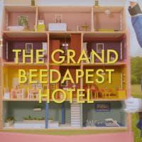 Grand Beedapest Hotel, l'alloggio a cinque stelle per api