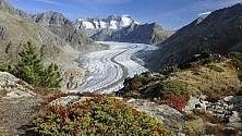 Da Presena al Tirolo i ghiacciai per tutti    foto