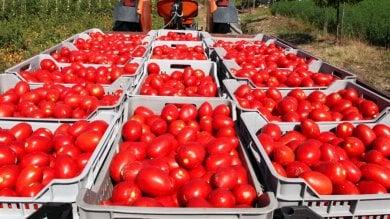 Pomodori in calo, bollette dell'acqua no La mappa dell'Italia a rischio deflazione