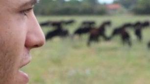 """La scelta di Alessio, 19 anni """"Ho mollato tutto per le pecore"""""""