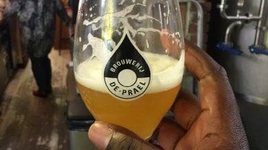 Dall'Olanda la birra fatta con la pioggia per salvare la città dalle inondazioni