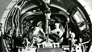 Belka e Strelka, i veri nomi delle cagnoline nello spazio