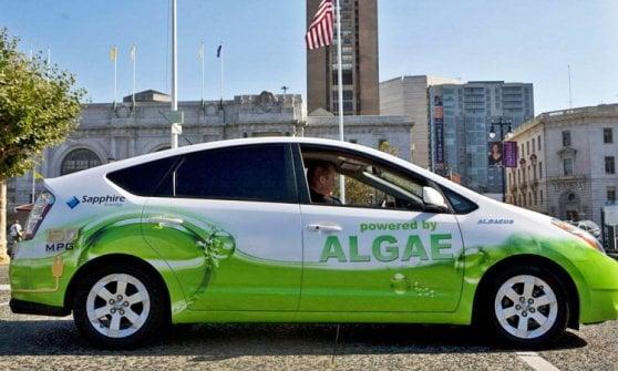 Dalle alghe alla cioccolata: i veicoli dai carburanti più strani
