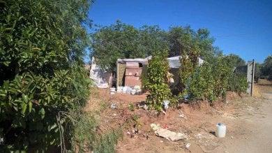 Caporalato, nel ghetto salentino di Nardò  sfruttati arruolati tramite WhatsApp