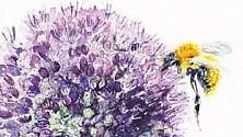 Estate: 10 libri per curare giardini, outdoor e piante