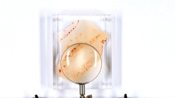 Frankenfashion: pelle artificiale dal Dna delle celebrities
