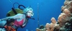 Passione subacquea, 10 regole  per immersioni sicure