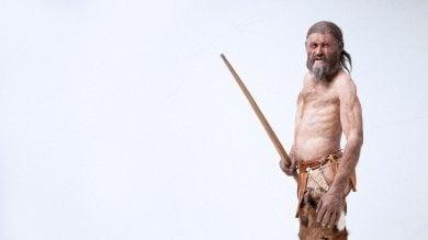 Pelli, corde, berretto e marsupio   foto   ecco come si vestiva (e cuciva) Ötzi