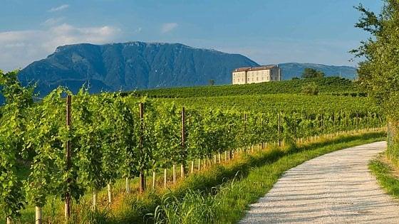Veneto. Alla scoperta delle terre del prosecco