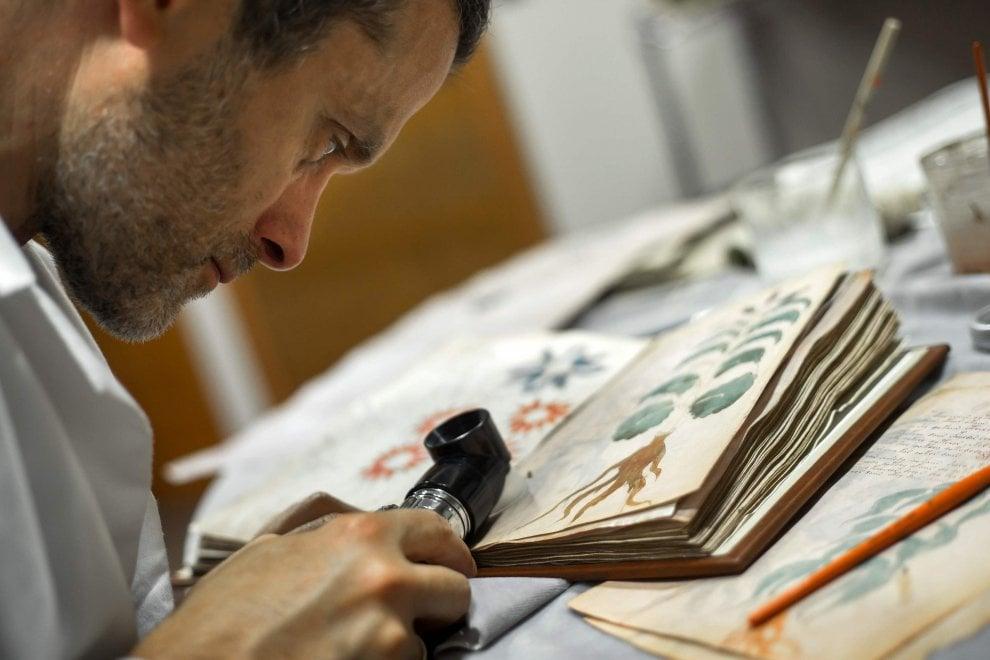 Manoscritto Voynich, il libro più misterioso del mondo ''clonato'' in Spagna
