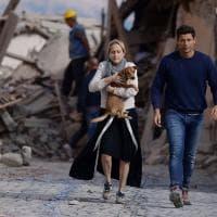 Terremoto, il dramma degli animali