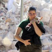 Terremoto, l'impegno dei volontari commuove il Paese: