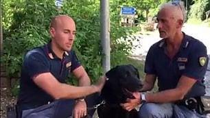 """""""Grazie Leo"""": tributo al labrador che ha salvato la bimba Giorgia"""
