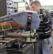 Disoccupazione giù all'11,4% Assunzioni ferme, più inattivi