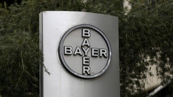 Bayer rilancia per Monsanto oltre 65 miliardi. I semi del mondo concentrati in poche mani